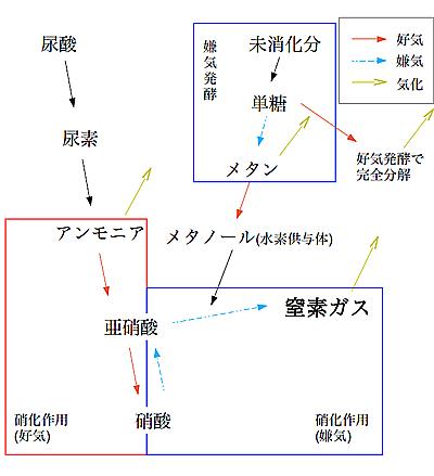youkei_hakkou