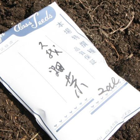 畑の種。京都の地元で大事に守られている久我の種。