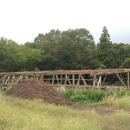 栖野さんの剪定枝堆肥場。1m以上の高さに野積みされた剪定枝が大量!