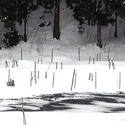 くんたん撒くと、雪溶けるんです。