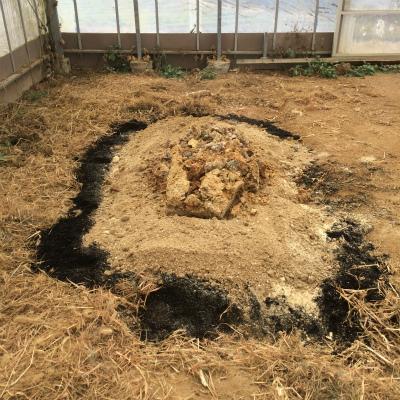 混和資材の真ん中に種菌ひろげたところ。