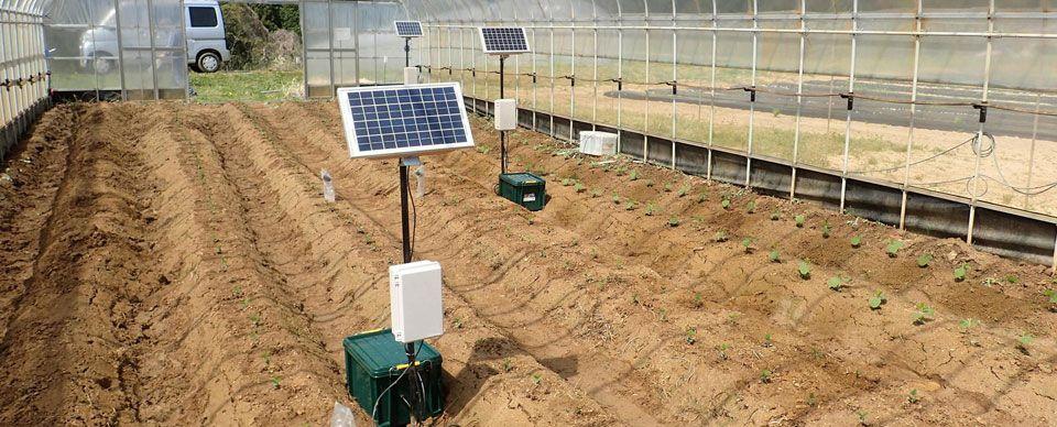 soil moisture sencing